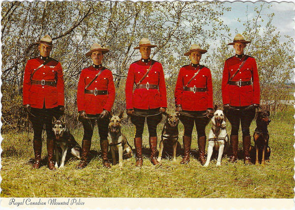 Members of the R.C.M.P. with their world famous dogs trained for police work.