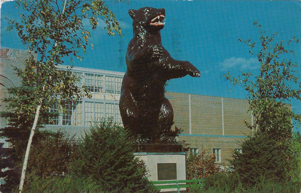 The University of Maine - Fighting Black Bear