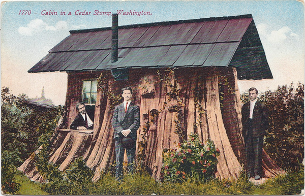 Cabin in a cedar stump - Washington