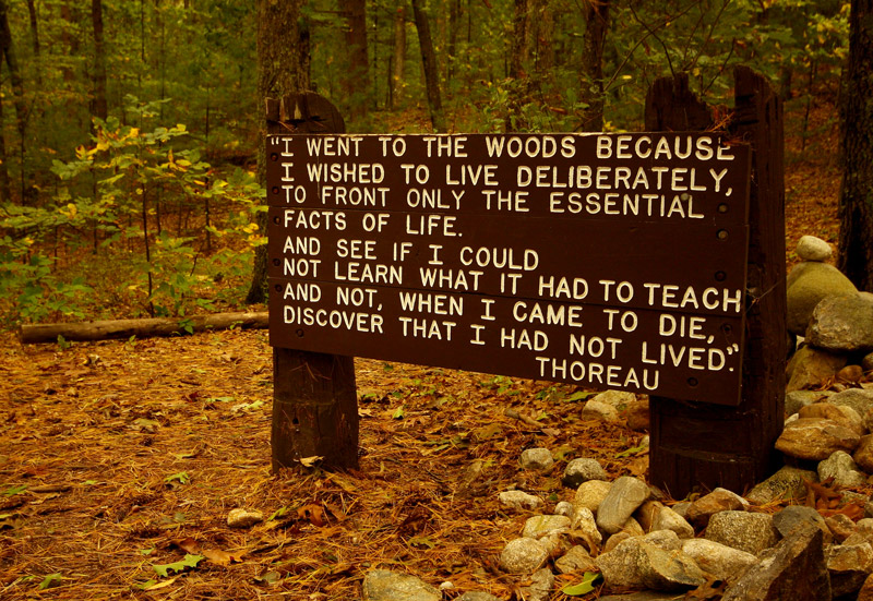 thoreau_quote